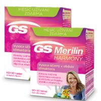 GS MERILIN HARMONY TBL.90+90 DÁREK 2017