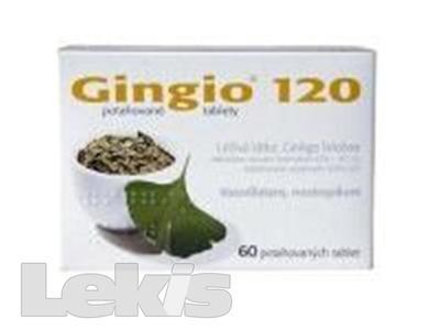 GINGIO 120 por tbl flm 60x120mg